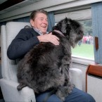 Ronald Reagan's Dog Lucky