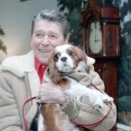 President Reagan's Cavalier King Charles Spaniel, Rex