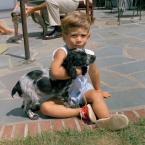 JFK's Cocker Spaniel, Shannon