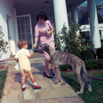 JFK's Irish Wolfhound, Wolf
