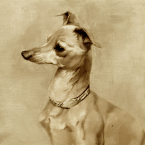 John Tyler's Italian Greyhound, Le Beau